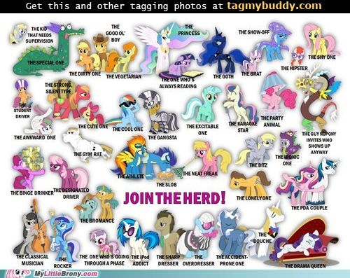 TagMyBuddy-Image-10770-Join-The-Herd