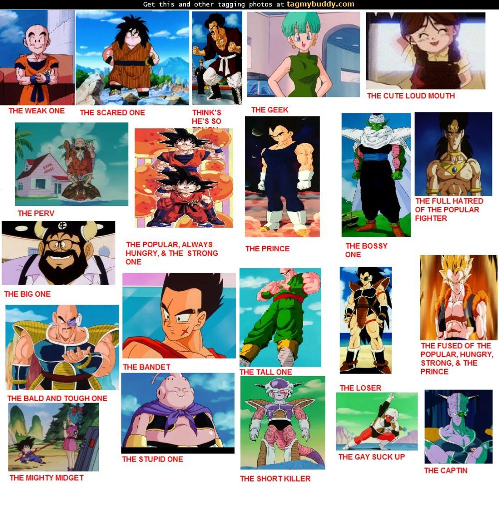 TagMyBuddy-Image-3048-Dragon-Ball-Z-Character-Personalities