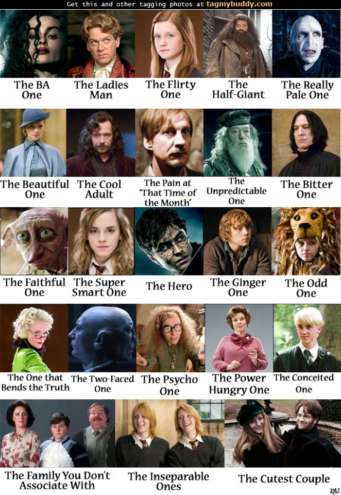 TagMyBuddy-Image-9677-Harry-Potter-Character-Personalities